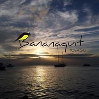 Bananaquit Apartments, Tobago
