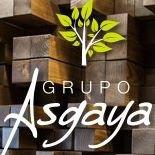 Grupo Asgaya
