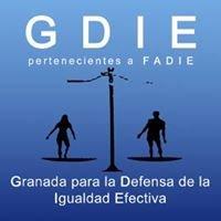 Granada para la Defensa de la Igualdad Efectiva. - GDIE