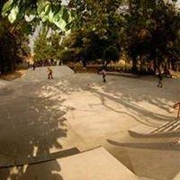 SkatePark Graneros