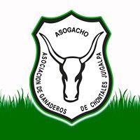 Asogacho