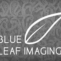 Blue Leaf Imaging