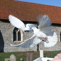 Memories White Dove Release