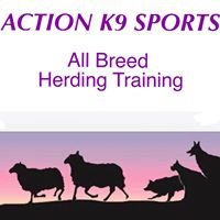 Action K9 Sports