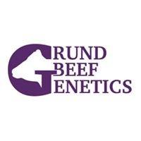 Grund Beef Genetics