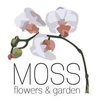 Moss Flowers and Garden