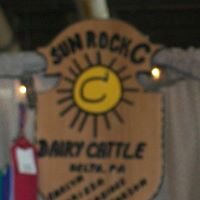 Sun Rock C Cattle Company
