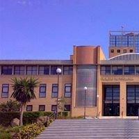 Facultad de Ciencias de la Educación UMA