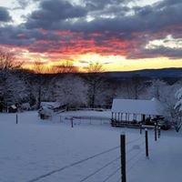 Twin Spruce Farm