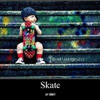 Skate Una Forma de Vida