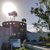 Biblioteca de la Universidad de Puerto Rico en Bayamón