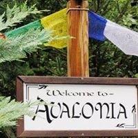 Avalonia Healing Arts & Aura Imaging: Avillion of Universal Insight