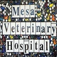 Mesa Veterinary Hospital