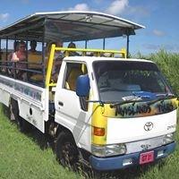 Myislands Tours by Javin - St. Kitts