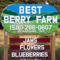 Best Berry Farm