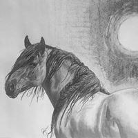 Wildlife, Western & Portrait Art by Peggy Olson