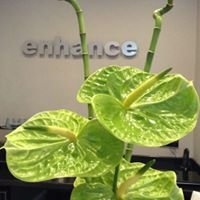 Enhance  Clinic Glasgow