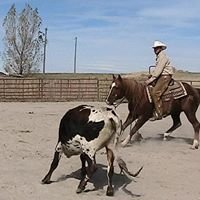 Scott Hulme Performance Horses