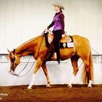MNM Pleasure Horses
