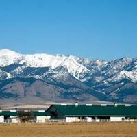 Saddle Peak Equestrian Center