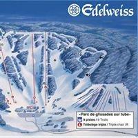 Mont Edelweiss