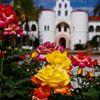 San Diego State University School of Social Work