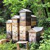 Bee Friendly Apiary