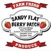 Sandy Flat Berry Patch