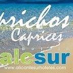 Hoteles y Alojamientos Turísticos AlicanteSur