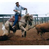 Rockin 7 Quarter Horses