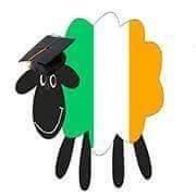 Academia Dublinia