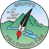Gruppo Alpini Pellegrino P.se