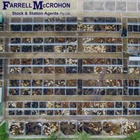 Farrell McCrohon Stock & Station Agents Pty Ltd