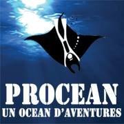 Procean