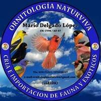 Ornitologia Naturviva