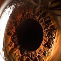 Neil Anderson Optometrist