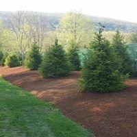Billco Landscape Contractors LLC