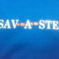 Sav-A-step 41 PALMYRA