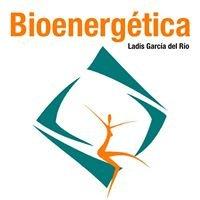 Ladis García del Río.Bioenergética