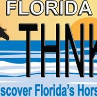 Discover Florida's Horses