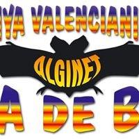 Penya Valencianista VA DE BO d'Alginet