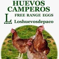 Granja Los huevos de paco