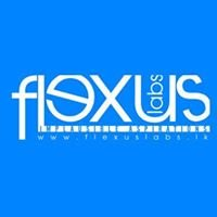 Flexus Labs