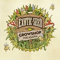 Exotic Seed Malasaña