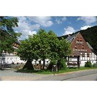 Hotel Lindenhof - Holzhau