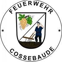 Freiwillige Feuerwehr Cossebaude
