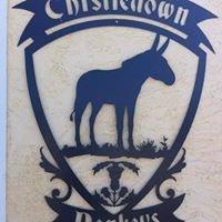Thistledown Donkeys