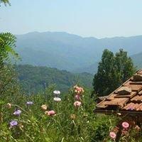 Toscaanse Vakantiehuizen