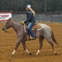 L & S Horse Company