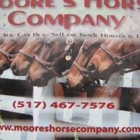 Moores Horse Company